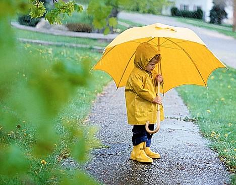 Любите дождь!